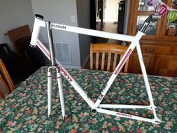 Schwinn 20th anniversary Madison track bike frame.