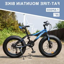 """Fat Tire Mountain Bike 20"""" 7-Speed Bicycle with Dual Disc Br"""