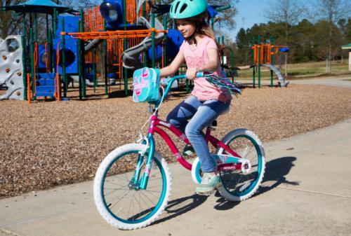Dynacraft Charmer Bike Coaster & Bag