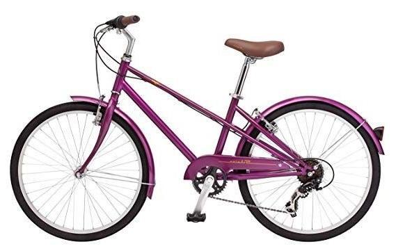 mifflin 24 wheel hybrid bicycle magenta