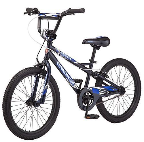 schwinn fierce bike