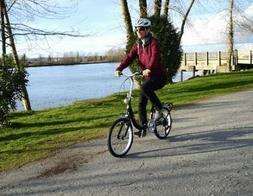 New Schwinn Loop Black Folding Bicycle